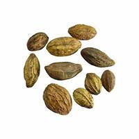 Organic Raw Badi Harad/Yellow Terminalia Chebula/Haritaki Natural Product 100 Gm