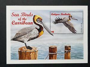 Antigua: Sea birds of the Caarribean; unmounted mint miniature sheet; pelican