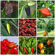 OFFERTA 9 diverse varietà di peperoncino chili MIX semi Chili semi Chili