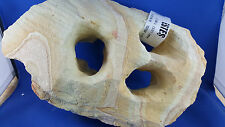 Real Sandstone Rock No 2 With Swirl and Holes Large Aquarium Ornament