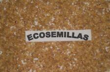 Withania somnifera Ginseng Indio Ashwagandha, 50 semillas ecologicas