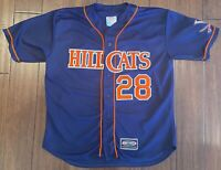EXTREMELY RARE Game Used Lynchburg Hillcats Virginia Cavaliers UVA Jersey #28