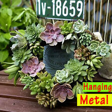 Metal Hanging plant basket heart shape Succulent iron flower pot Decor hook