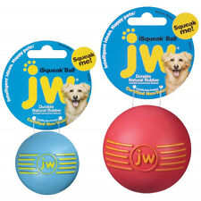 JW Pet iSqueak Squeaker Dog Puppy Fetch Chew Toy Medium Ball