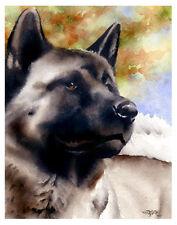 """AKITA"" Watercolor Dog ART Print Signed by Artist DJR"