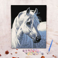 Hand-painted Animal Girl DIY Oil Painting by Numbers Canvas Kits Home Decor ft