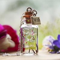 Women Bottle Necklace Dandelion Seeds Paillette in Glass Pendant Long Chain Gift