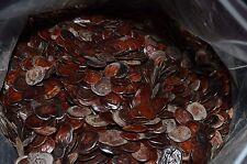50 YOPO Seeds Anadenanthera Peregrina Viable Natural FRESH