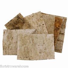 Birch Tree Bark Sheets, Bundle of 7, 24 x 17cm (9.5 x 6.5 inches)