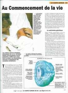 Fascículo Nuestra Monde - El Cuerpo Humano - A Comienzo de La Vida