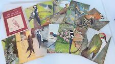 Livre Delachaux et Niestlé Les Oiseaux dans la Nature, série IV, Robert