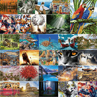 DIY Digital Oil Painting By Number Kit Thinking Beauty Drawing Picture Mosaic