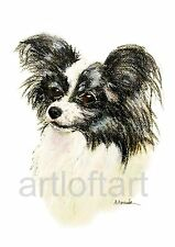 PAPILLON #3 DOG  ACEO Card Print by Alma Borcuk