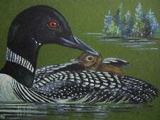 Loon bird waterfowl wildlife print of painting