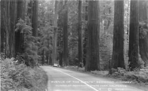 Autos Avenue Redwood Moulin #14 Humboldt California RPPC Postcard 21-2059
