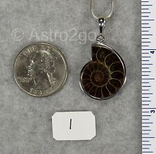 AMMONITE PENDANTS $39 Sterling Silver Fossil Jewelry by STARBORN CREATIONS NEW!