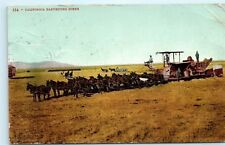 1908 California Farm Harvesting Horse Drawn Wheat Harvester Vintage Postcard A60