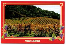 Wine Country Postcard California Fields Grapes Rolling Rows Rust Gold Unposted