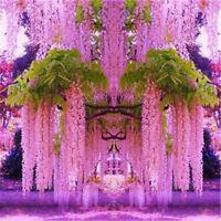 30pcs Purple Wisteria Flower Seeds Perennial Climbing Plants Bonsai Home GaBLUS