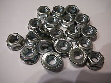m6 serrated flanged nuts zink plated great for bikes garden or home jobs 20 pack