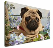 """Fawn Pug Dog in a Basket 30""""x20"""" Wall Art Canvas, Extra Large Pict, AD-P96-C3020"""