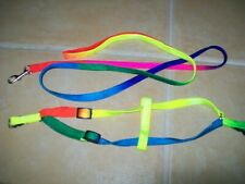 SMALL DOG PUPPY KITTEN RABBIT HARNESS + LEAD SET RAINBOW BRIGHT ADJUSTABLE