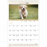 At-A-Glance Puppies Monthly Wall Calendar (dmw16728)