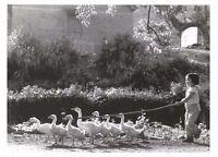 Postcard Goose Girl, Fu Jian Province China 1985 by Wang Gang-Feng BW53
