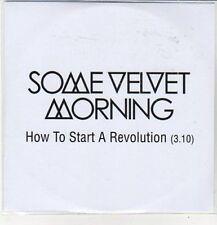 (CZ652) Some Velvet Morning, How to Start a Revolution - 2012 DJ CD