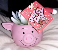 🎄 M & S PERCY PIG PERCYMAS PLANTER 🐷🐷🐷