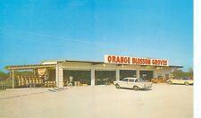 CLEARWATER,FLORIDA-ORANGE BLOSSOM GROVES-HUTCHINSON/REPETTO-(STORE-307*)