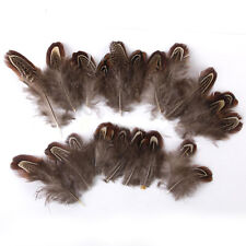 HK- 50X 4-10cm Natural Pheasant Feathers for Dream Catcher DIY Craft Decor Utili