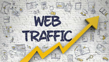 Real Website Traffic Software  - Good For SEO & Online Marketing on the Web