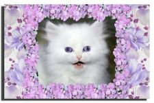 GREETING CARD Cute White Kitten Blue Eyes Persian Angora HANDMADE Satin Finish