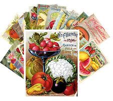 Postcards Pack [24 cards] Fruits and Veges Vintage Seed Pocket Garden CC1016