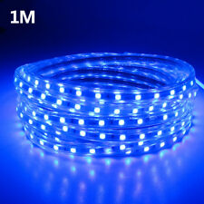 5050 LED blue Strip 220V240V Flexible tape rope Light 1M Waterproof SMD 60leds/m