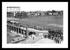 Surrey Cricket Memorabilia Photographs