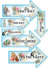 12 Party Arrows Beatrix Potter  Peter Rabbit Party Supplies Party Decorations