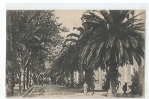 Corsica,Ajaccio,Avenue of / The 1ER Consul