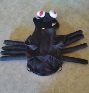 Small Martha Stewart dog spider costume