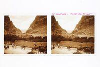 El Kantara Algeria Foto Stereo L3n10 Vintage Placca Da Lente