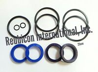 MAHINDRA TRACTOR POWER STEERING CYLINDER REPAIR KIT 25 mm / 1 INCH