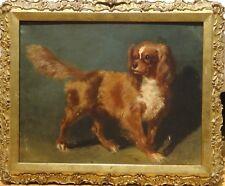 19th Century English School Dog Portrait King Charles Spaniel Antique Painting