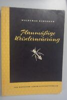 Planmäßige Weiselerneuerung Waldemar Bloedorn Imker-Fachbuch 1964 Bienen Imkerei