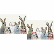 New listing 2 Bunny Bunch Vinyl Placemats