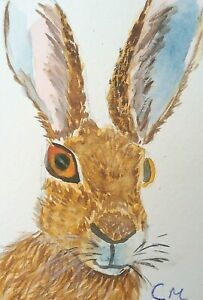 Aceo Hare 2 Original Watercolour,  by Casimira Mostyn