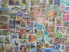 1000 Different Northern Rhodesia and Zambia Stamp Collection