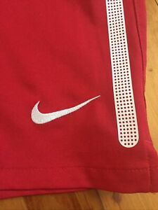 Nike Boys Training Shorts Size XL 13-15 Years Deep Red With Pant Inner