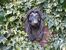 LARGE AFGHAN HOUND DOGS BRONZED  STONE HEAD WALL SCULPTURE