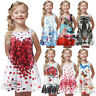 Toddler Girl Summer Princess Dress Kids Baby Print Party Sleeveless Casual Dress